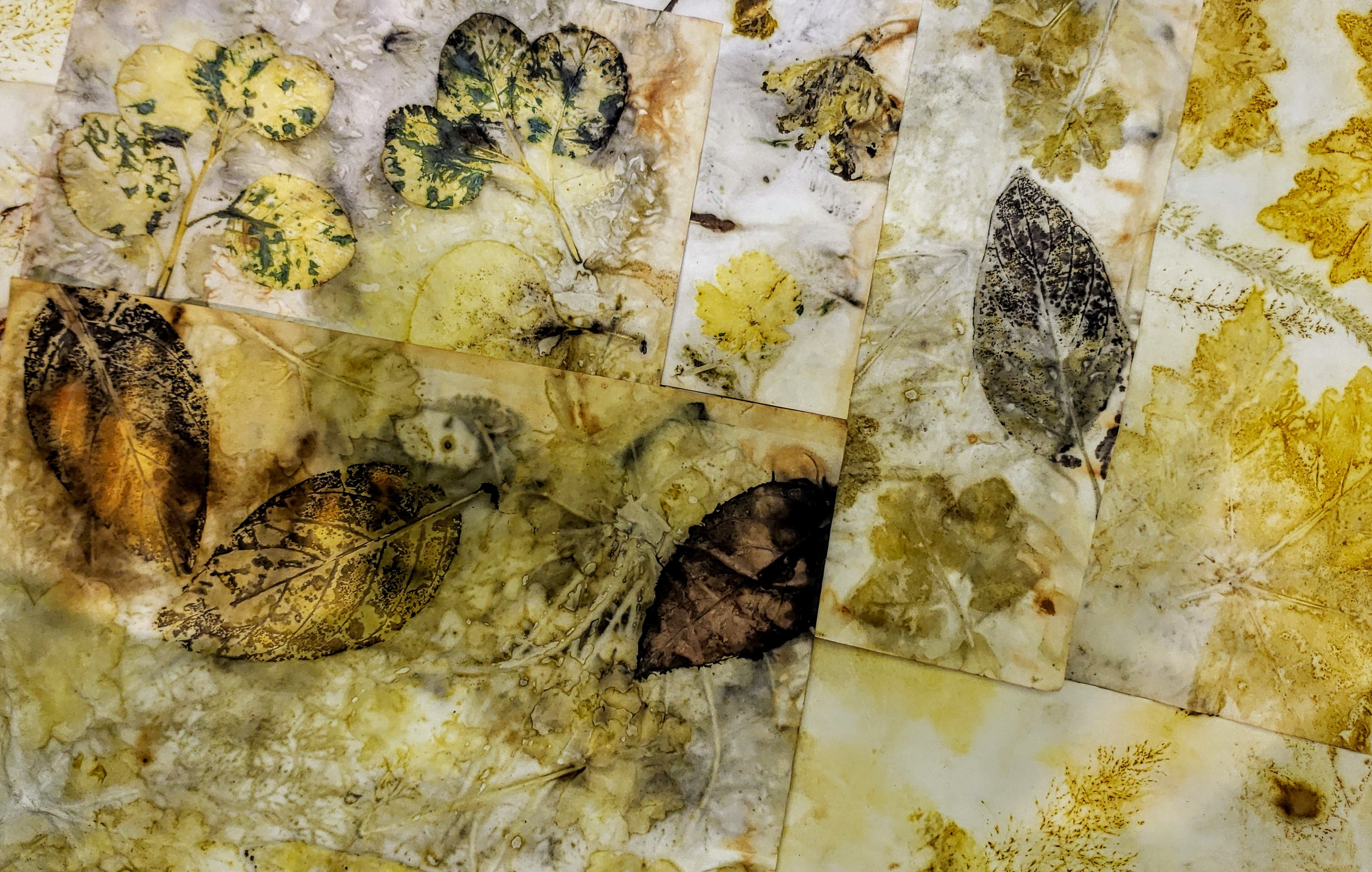 Eco Printing Show & Tell